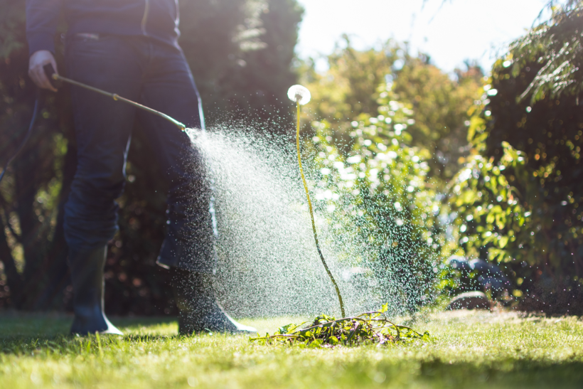 What Do Surfactants Do In Herbicides?