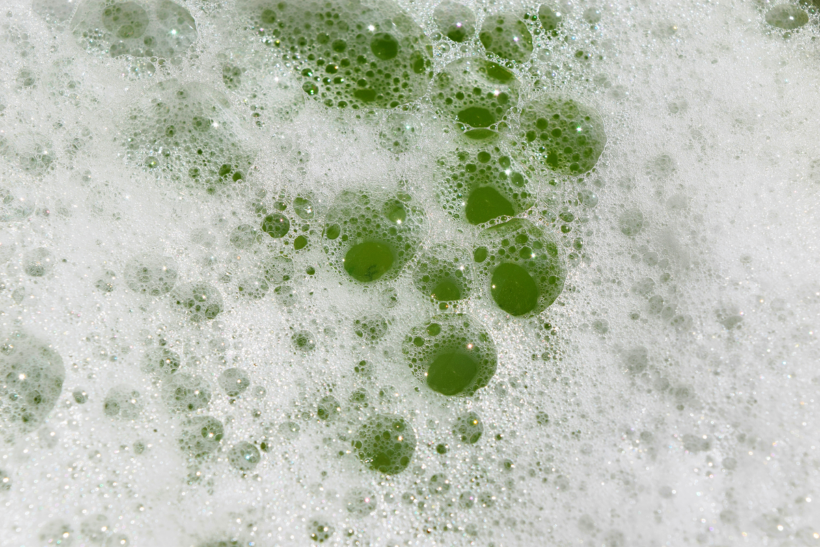 What Are Biosurfactants?